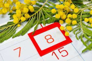 Holidays_March_8_Mimosa_Closeup_515559_1280x850.jpg